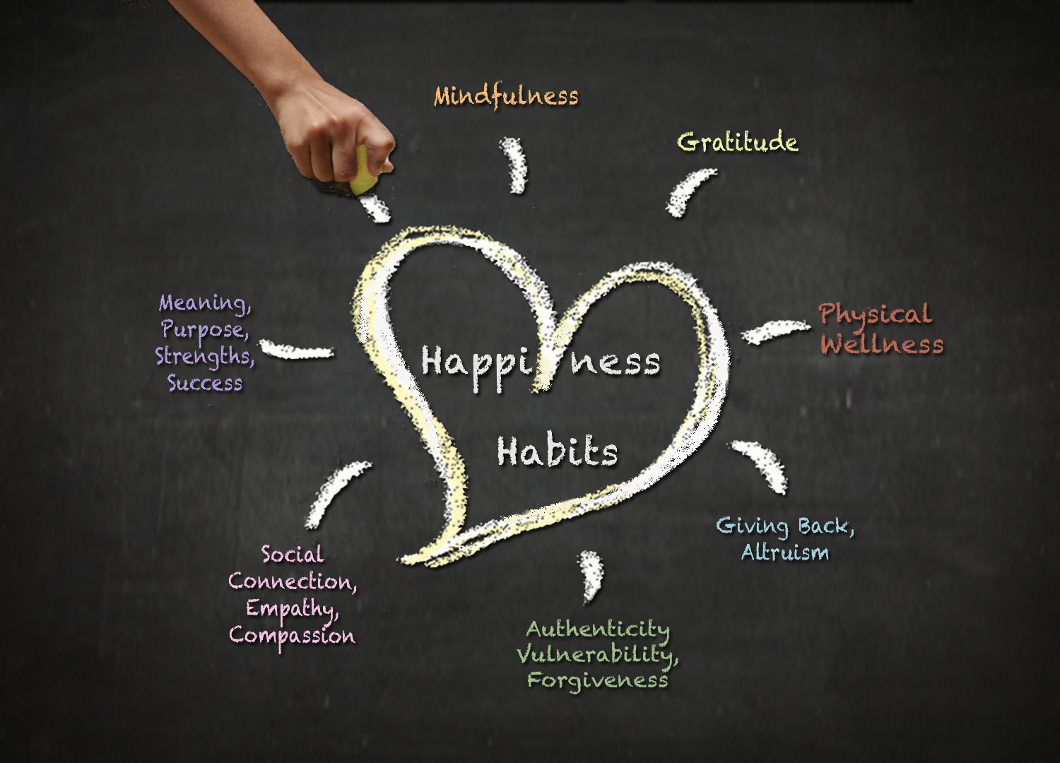 five steps to happiness Find helpful customer reviews and review ratings for five steps to happiness: learning to explore and understand your emotional mind at amazoncom read honest and unbiased product reviews from our users.